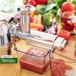 Best Twin Gear Juicers